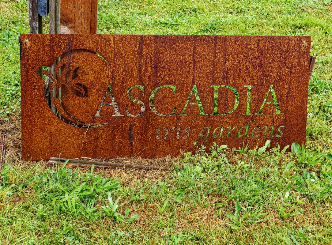 Cascadia-Iris-1